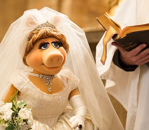 Photo Courtesy: Muppets Most Wanted